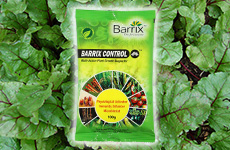 Beetroot using Barrix Control