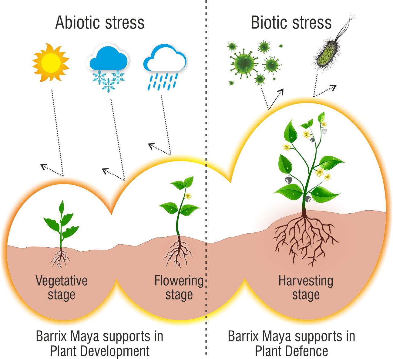 Barrix Maya for organic farming